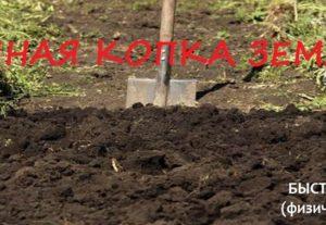 Земельные работы Уфа
