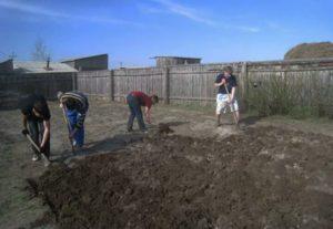 Помошник на даче, уборка территории, копка огорода.