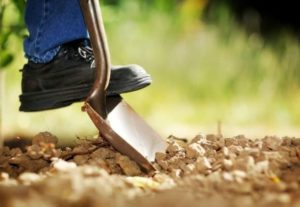 Земляные работы не дорого.
